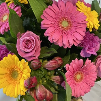 Bouquet rond du jour à partir de 30 €